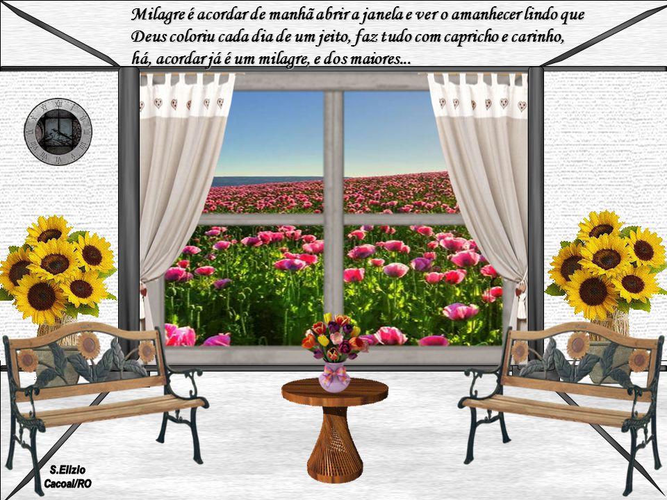 Milagre é acordar de manhã abrir a janela e ver o amanhecer lindo que
