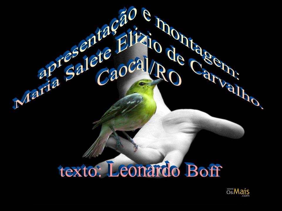 apresentação e montagem: Maria Salete Elizio de Carvalho. Caocal/RO