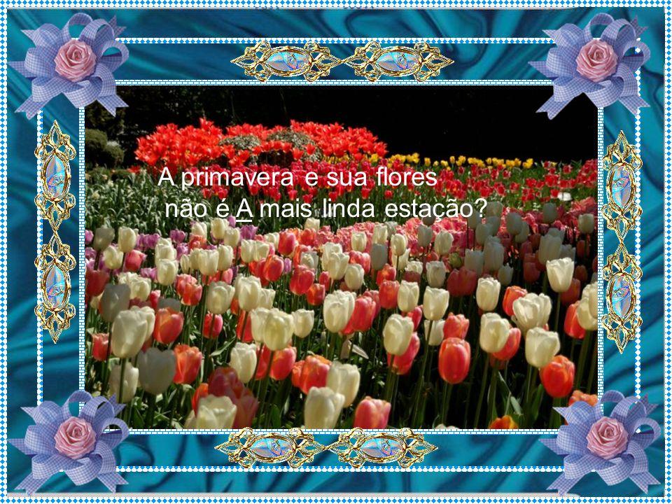 A primavera e sua flores