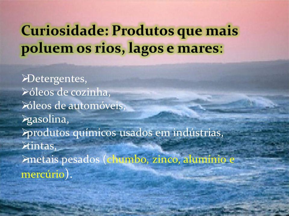 Curiosidade: Produtos que mais poluem os rios, lagos e mares: