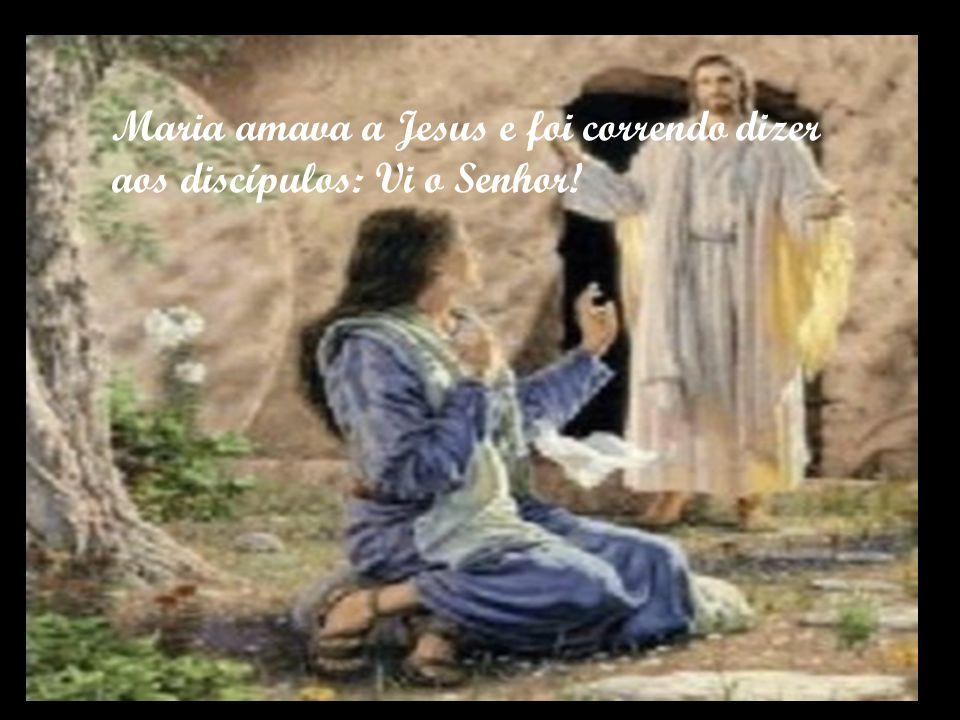 Maria amava a Jesus e foi correndo dizer