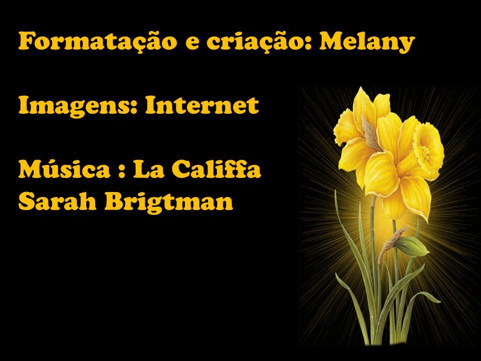Formatação e criação: Melany