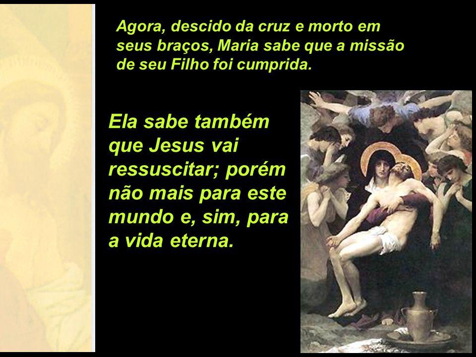Agora, descido da cruz e morto em seus braços, Maria sabe que a missão de seu Filho foi cumprida.