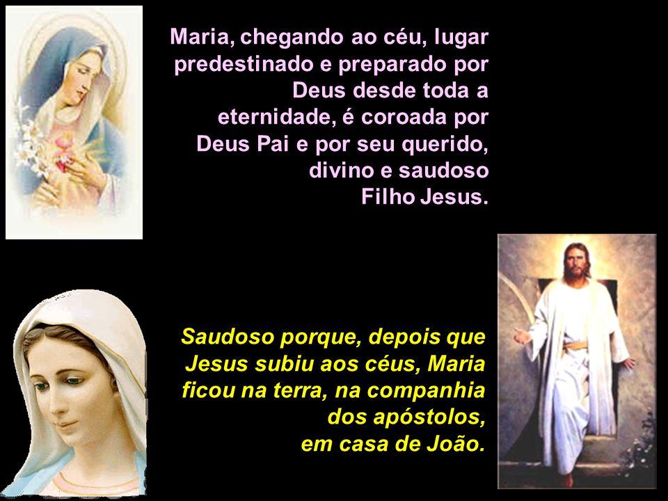 Maria, chegando ao céu, lugar predestinado e preparado por Deus desde toda a eternidade, é coroada por Deus Pai e por seu querido,