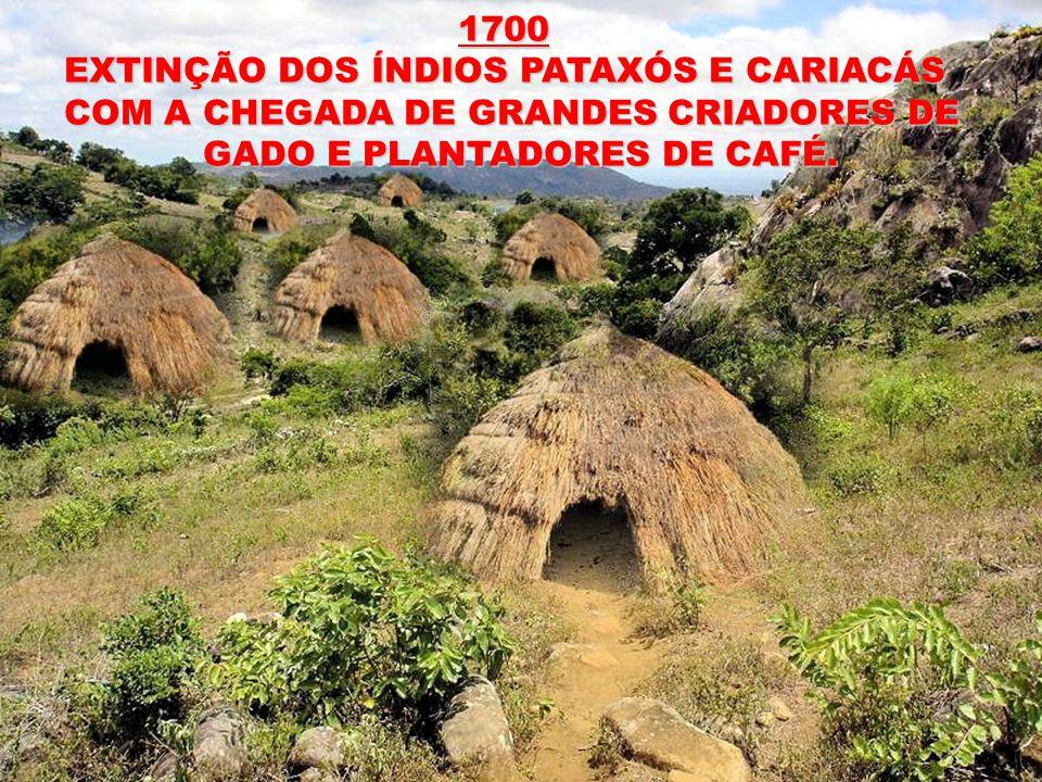 1700 EXTINÇÃO DOS ÍNDIOS PATAXÓS E CARIACÁS. COM A CHEGADA DE GRANDES CRIADORES DE.