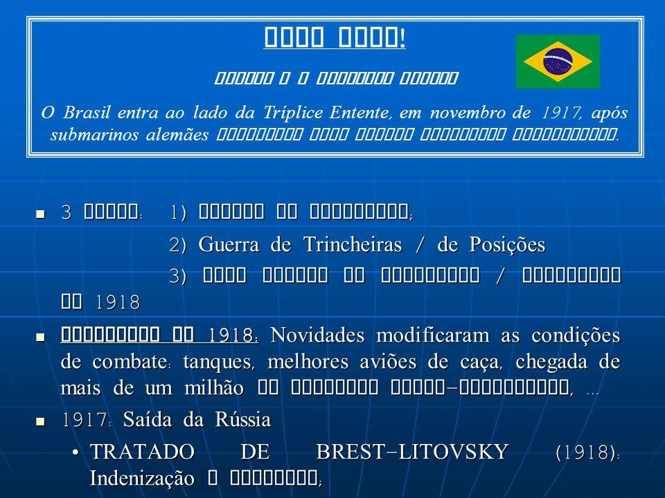 BRASIL E A PRIMEIRA GUERRA