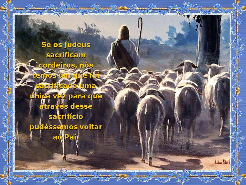 Se os judeus sacrificam cordeiros, nós temos um que foi sacrificado uma única vez para que através desse sacrifício pudéssemos voltar ao Pai.
