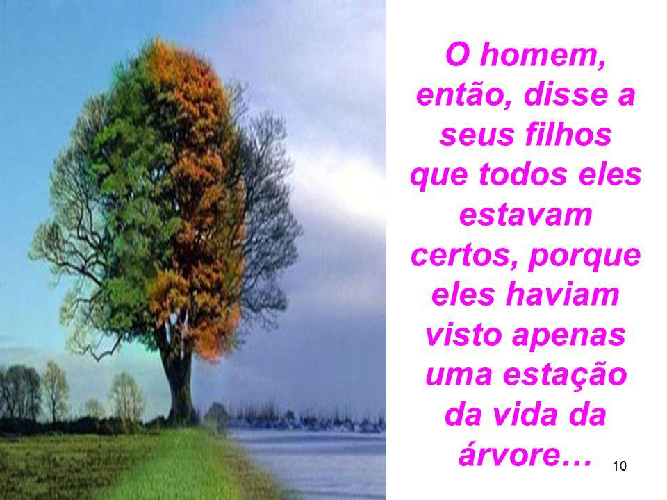 O homem, então, disse a seus filhos que todos eles estavam certos, porque eles haviam visto apenas uma estação da vida da árvore…