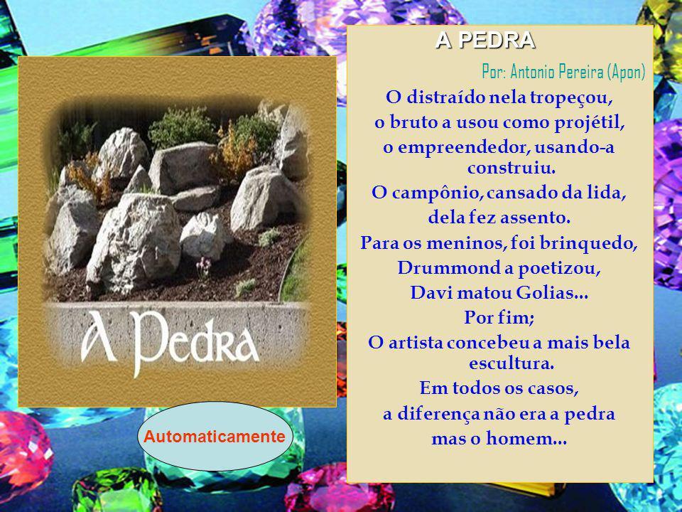 Por: Antonio Pereira (Apon)