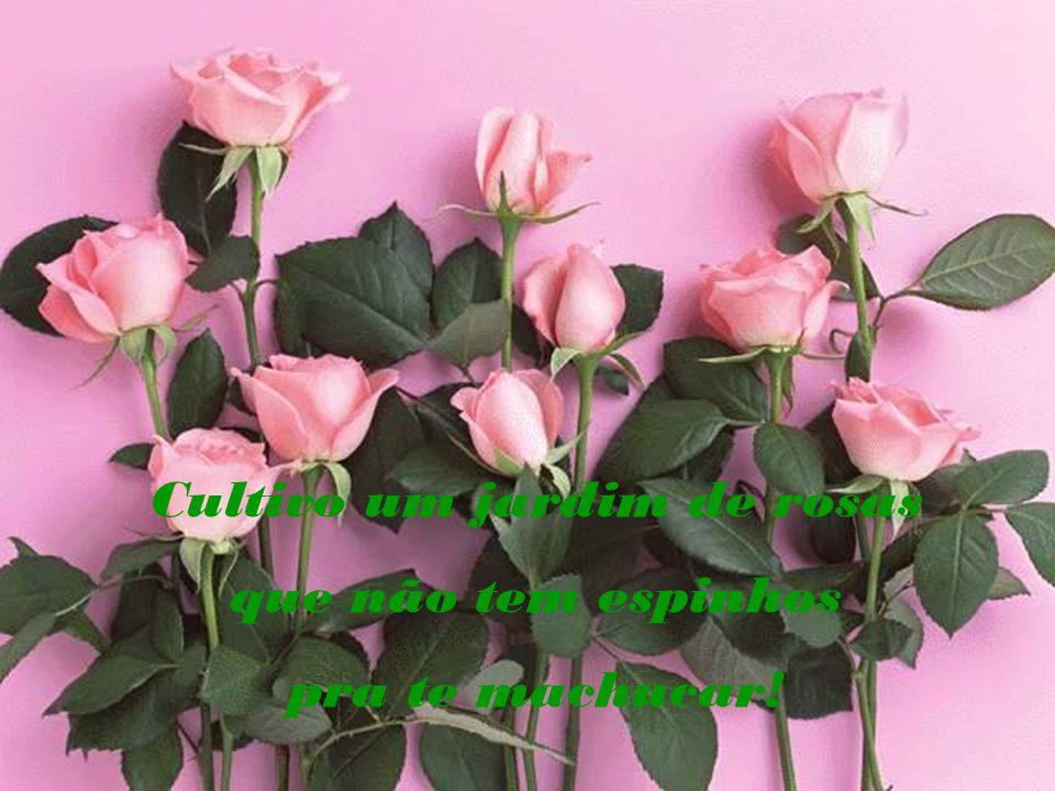 Cultivo um jardim de rosas