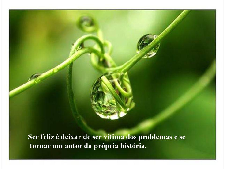 Ser feliz é deixar de ser vítima dos problemas e se tornar um autor da própria história.