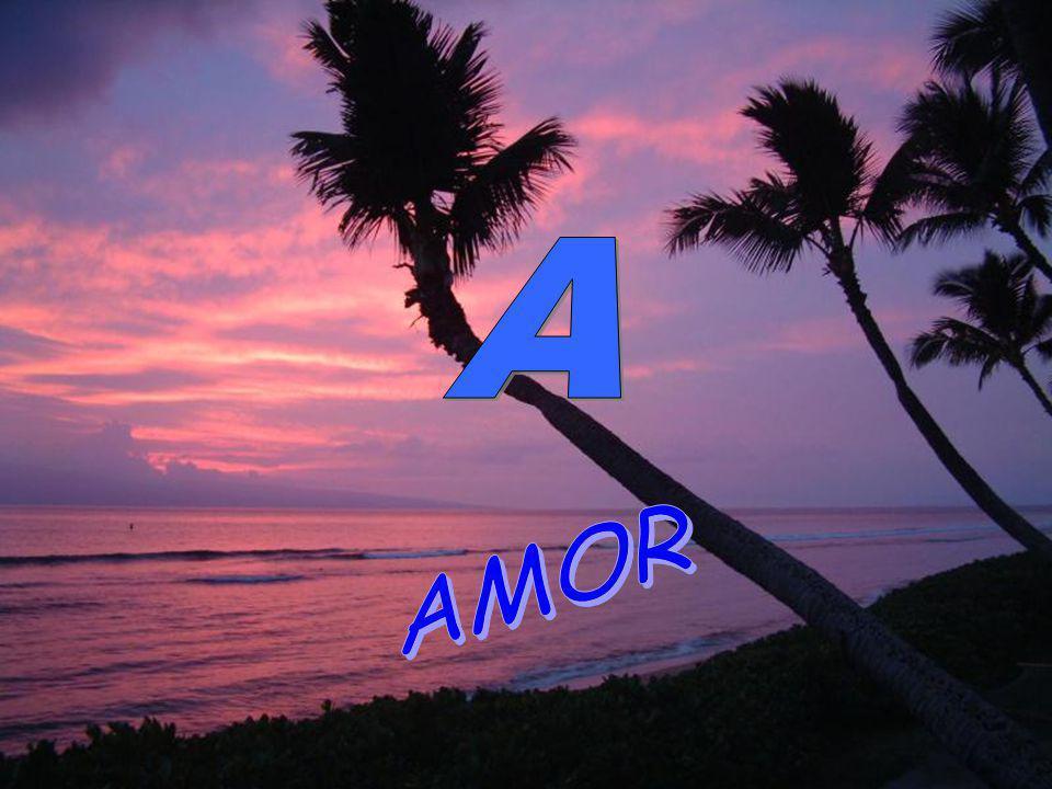 A AMOR