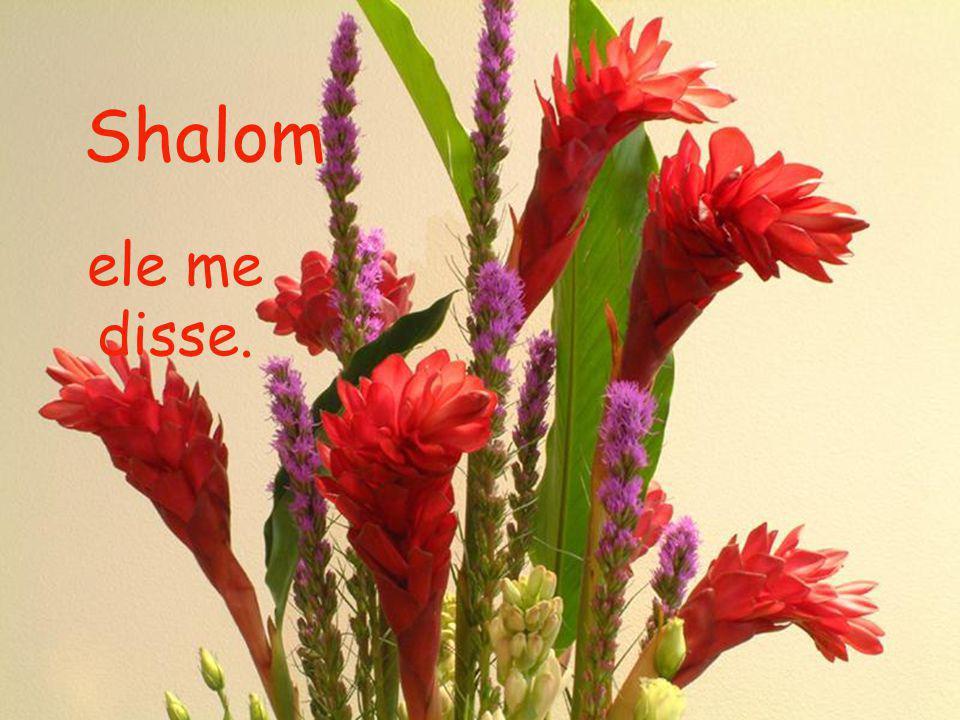 Shalom ele me disse.