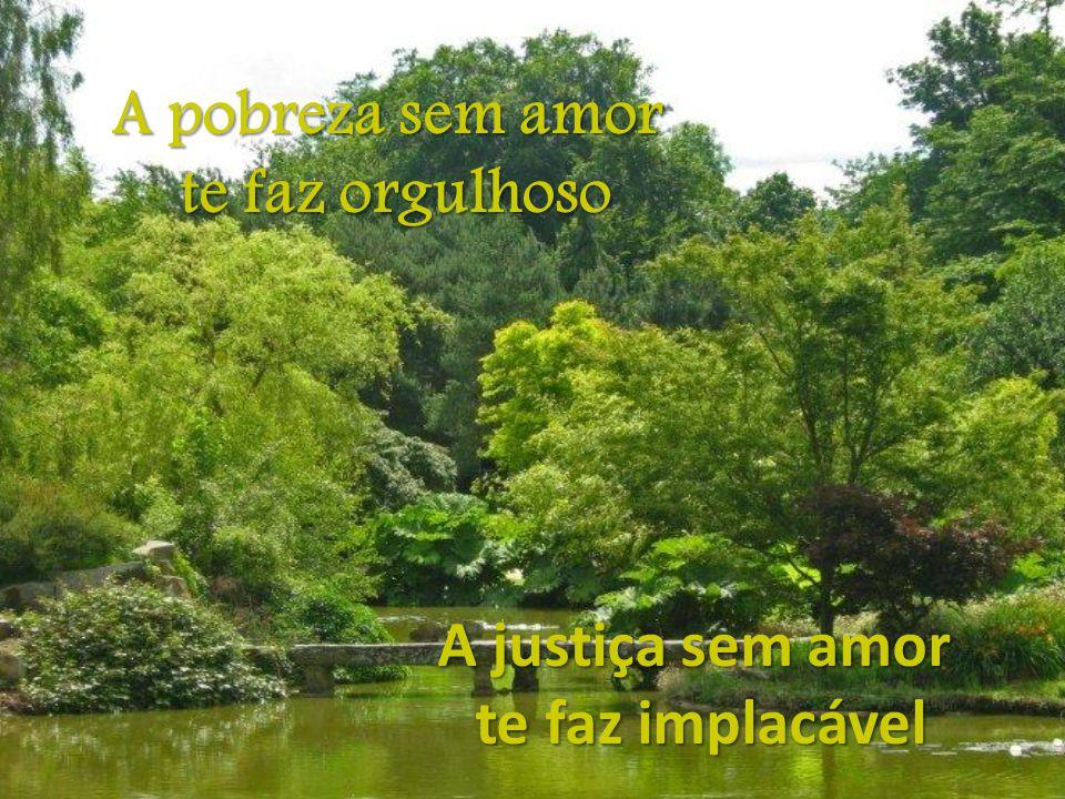A pobreza sem amor te faz orgulhoso A justiça sem amor te faz implacável