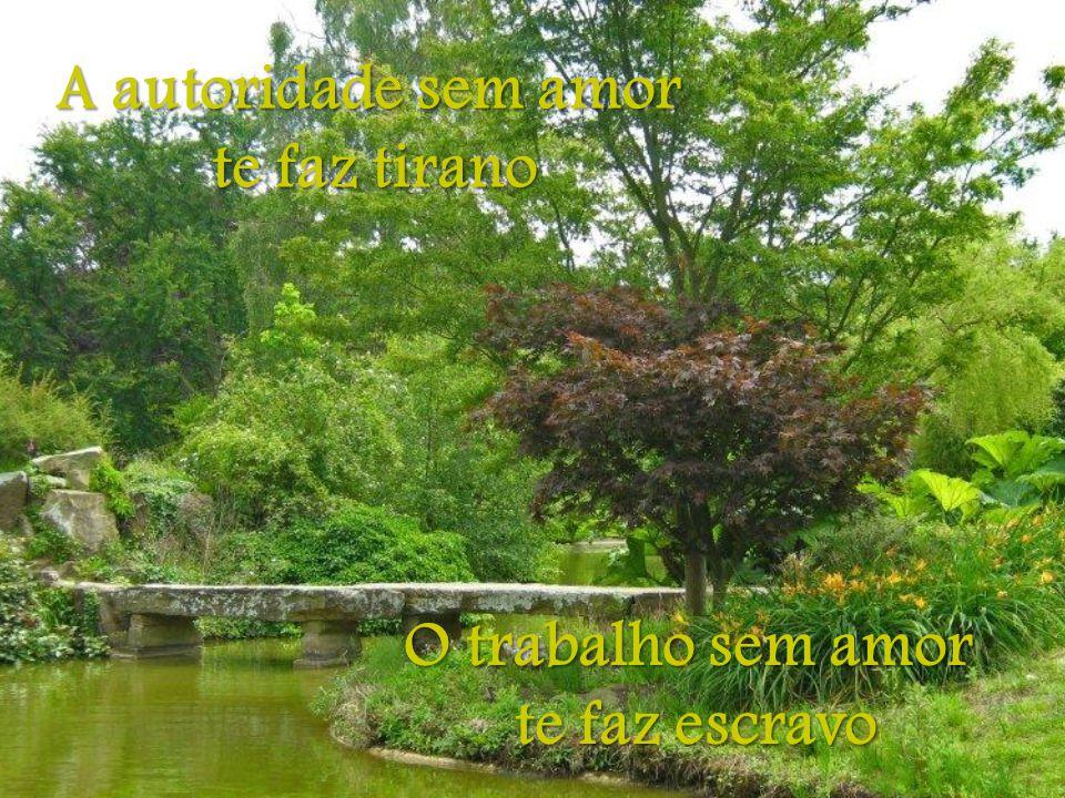 A autoridade sem amor te faz tirano O trabalho sem amor te faz escravo