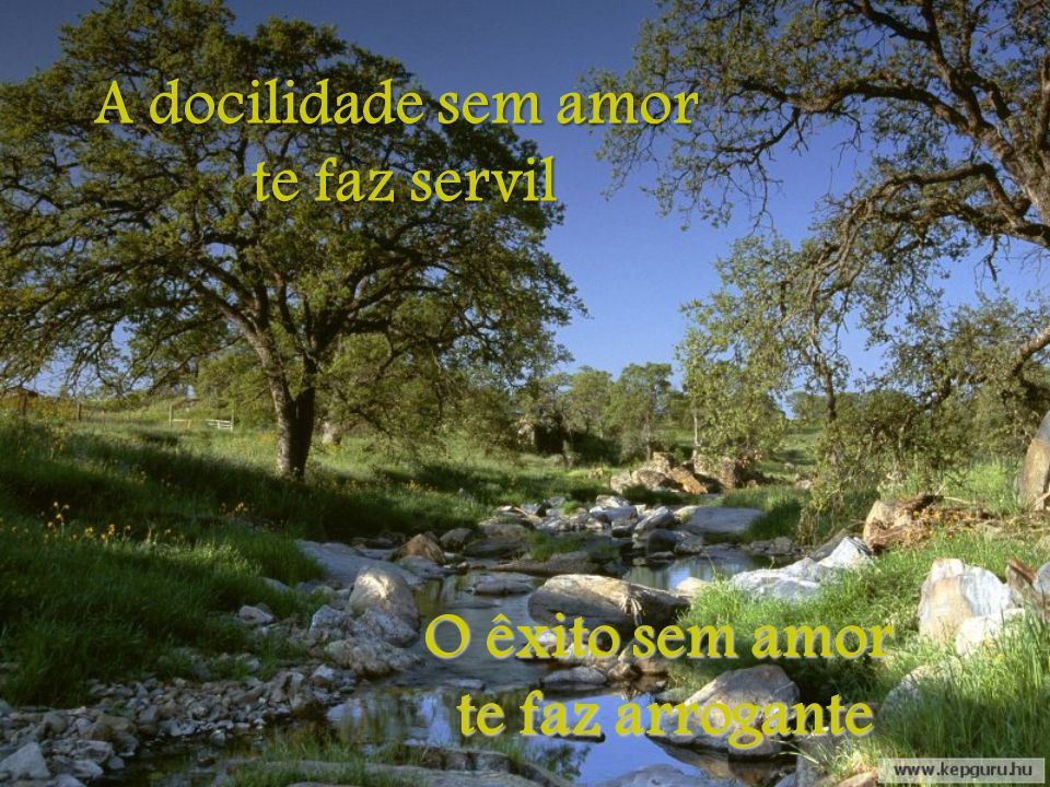A docilidade sem amor te faz servil O êxito sem amor te faz arrogante