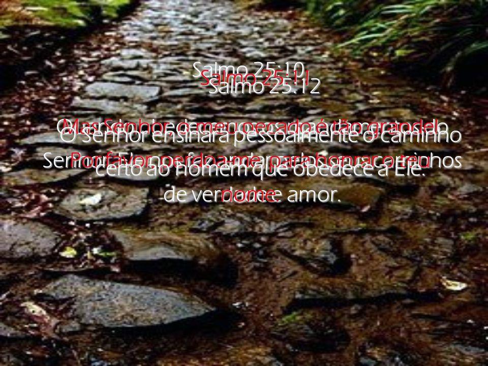 Mas Senhor, o meu pecado é tão grande!