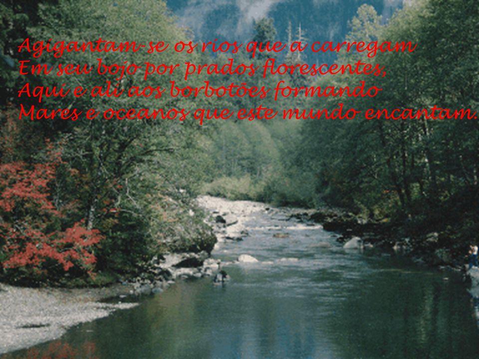 Agigantam-se os rios que a carregam