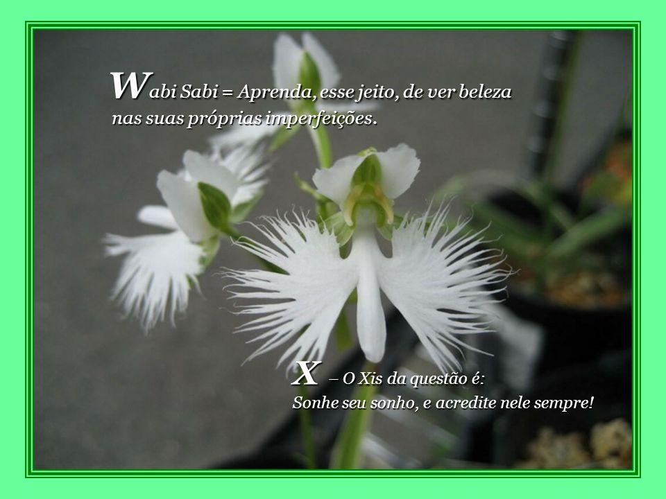 Wabi Sabi = Aprenda, esse jeito, de ver beleza