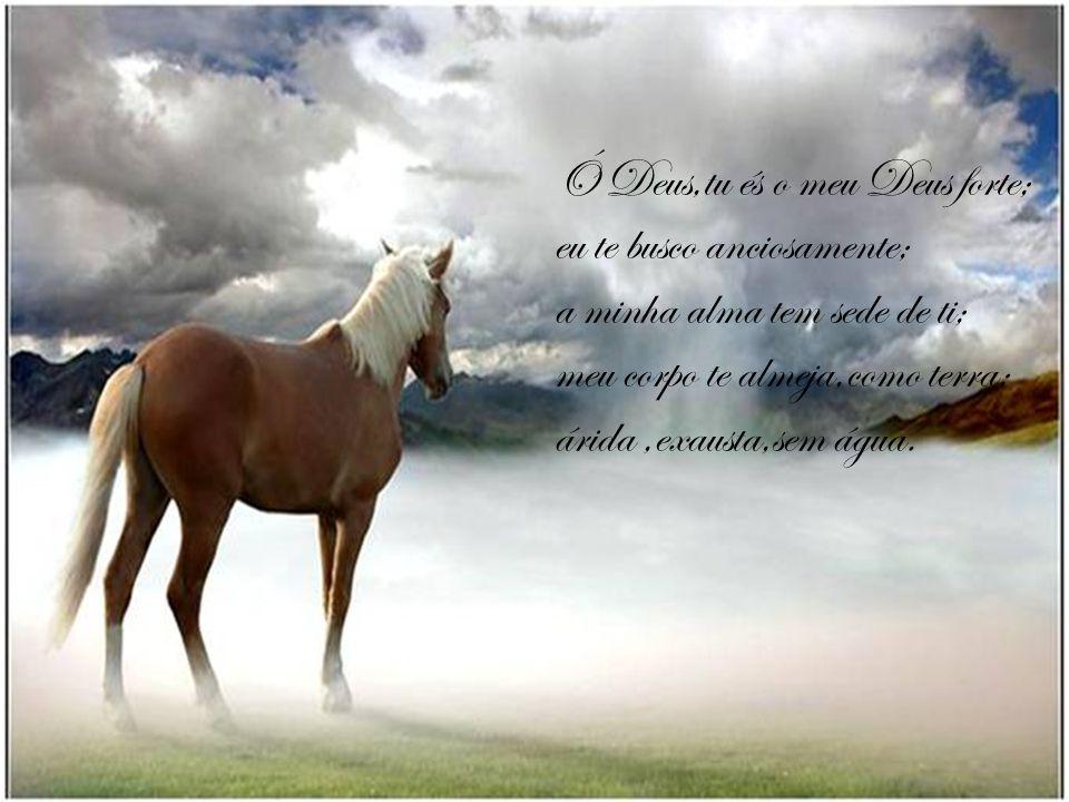 Ó Deus,tu és o meu Deus forte;
