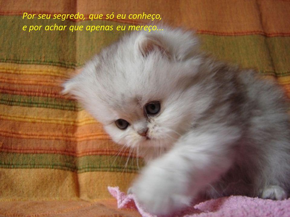 Por seu segredo, que só eu conheço, e por achar que apenas eu mereço...