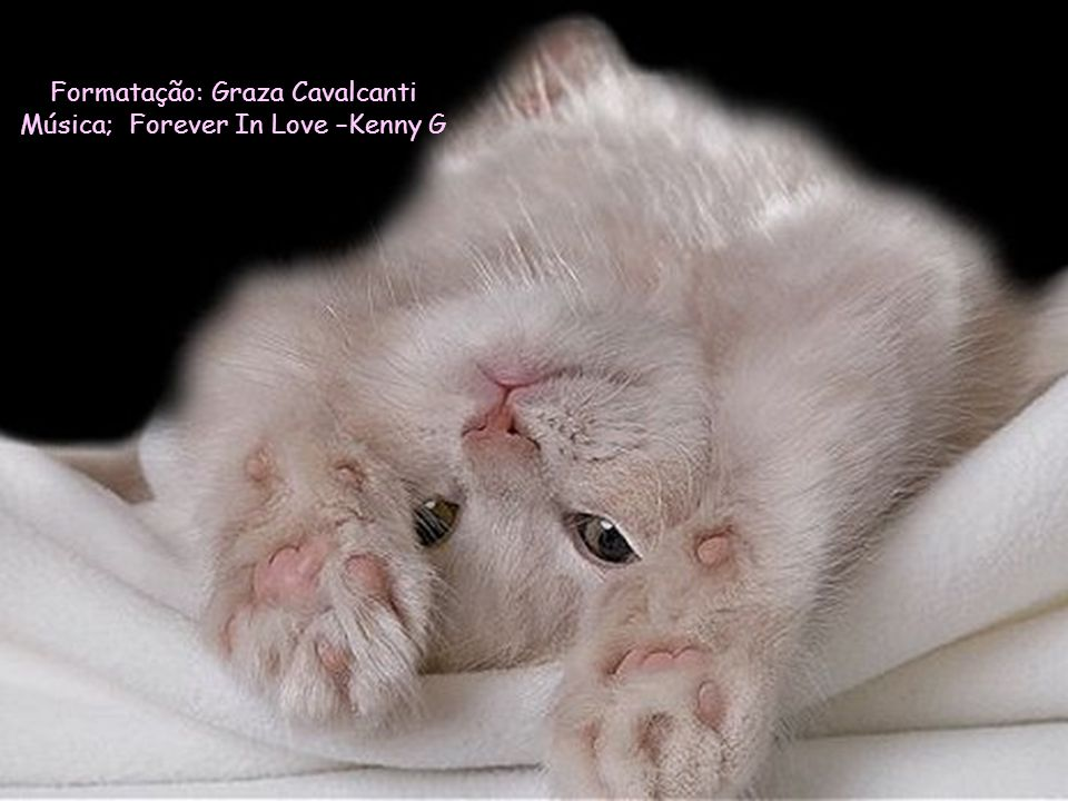Formatação: Graza Cavalcanti Música; Forever In Love –Kenny G