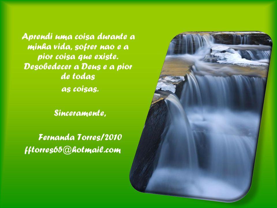 as coisas. Sinceramente, Fernanda Torres/2010 fftorres65@hotmail.com