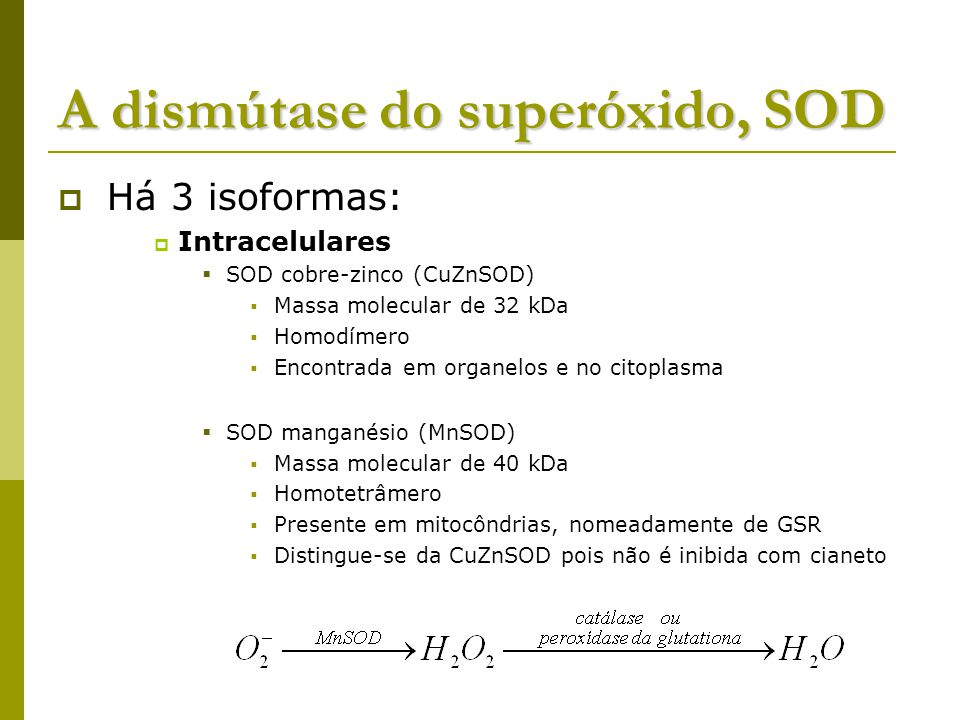 A dismútase do superóxido, SOD