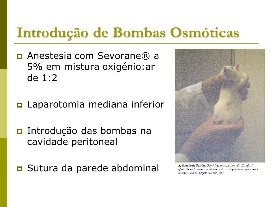 Introdução de Bombas Osmóticas