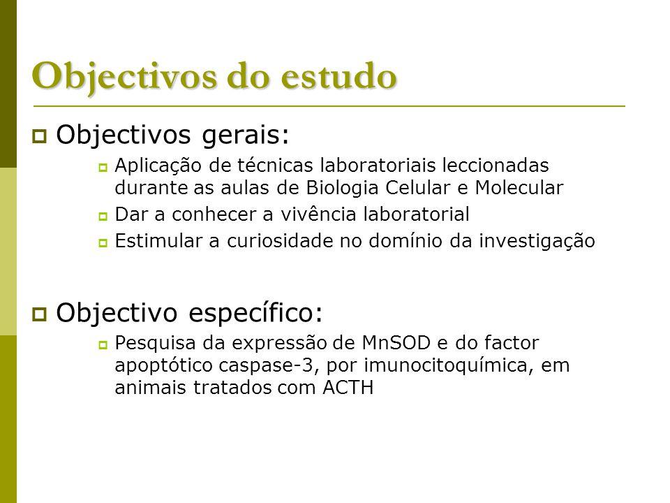 Objectivos do estudo Objectivos gerais: Objectivo específico:
