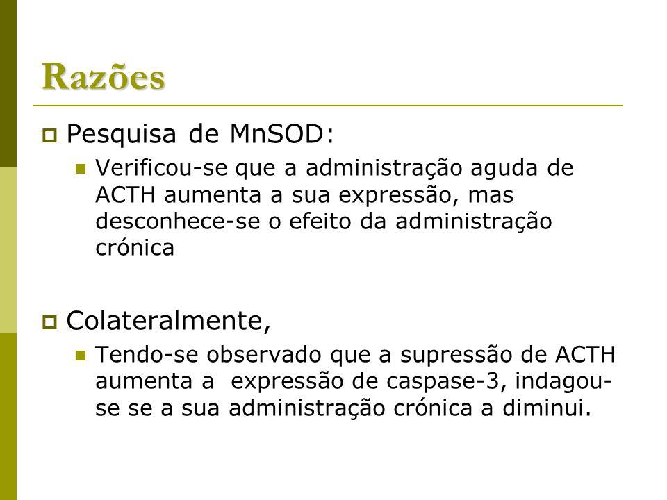 Razões Pesquisa de MnSOD: Colateralmente,