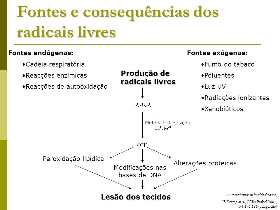 Fontes e consequências dos radicais livres