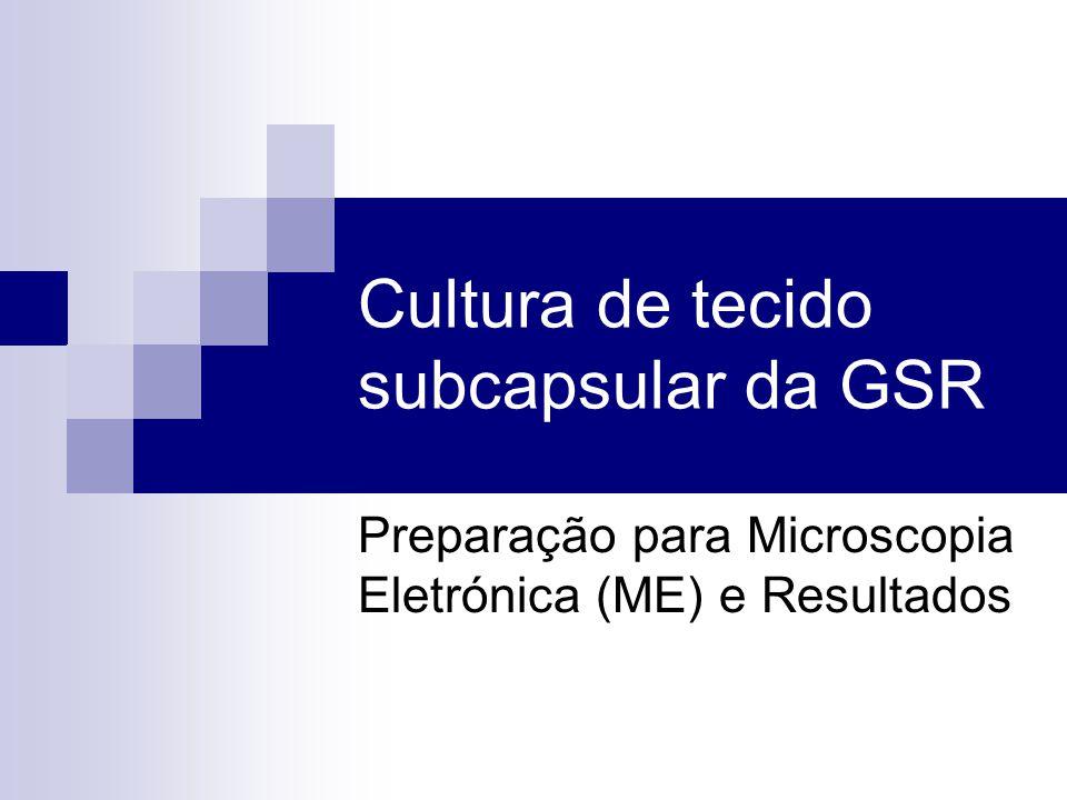 Cultura de tecido subcapsular da GSR