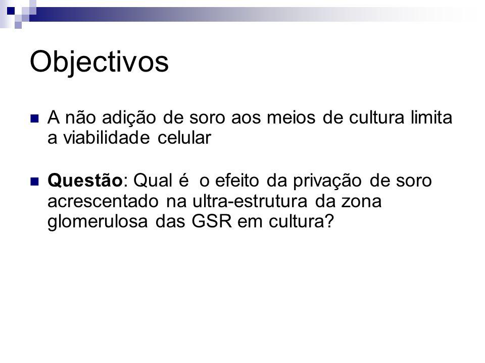 Objectivos A não adição de soro aos meios de cultura limita a viabilidade celular.