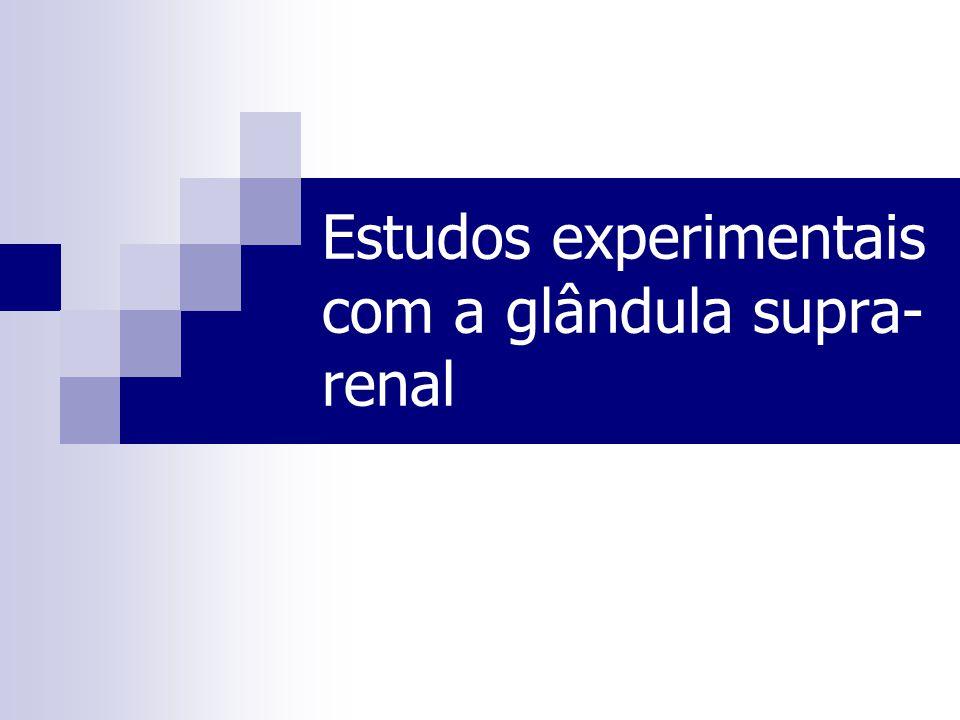 Estudos experimentais com a glândula supra-renal