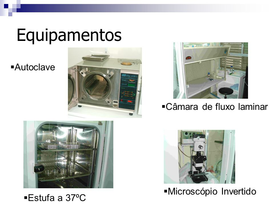 Equipamentos Autoclave Câmara de fluxo laminar Microscópio Invertido
