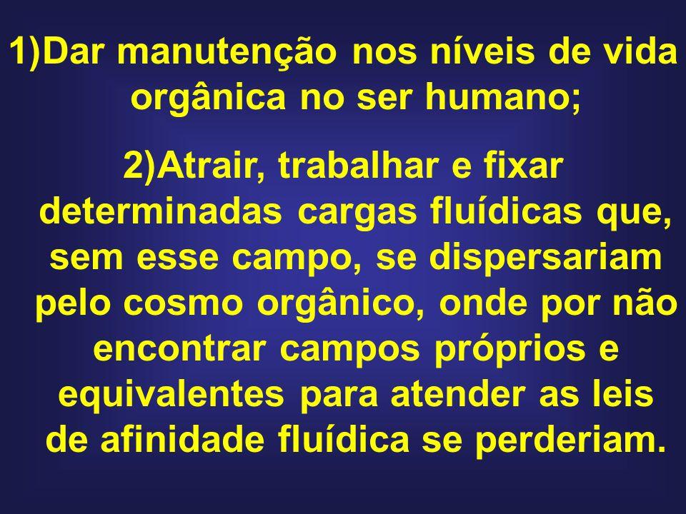 Dar manutenção nos níveis de vida orgânica no ser humano;