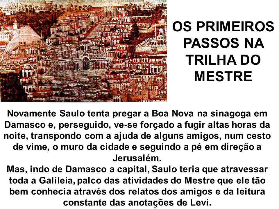 OS PRIMEIROS PASSOS NA TRILHA DO MESTRE