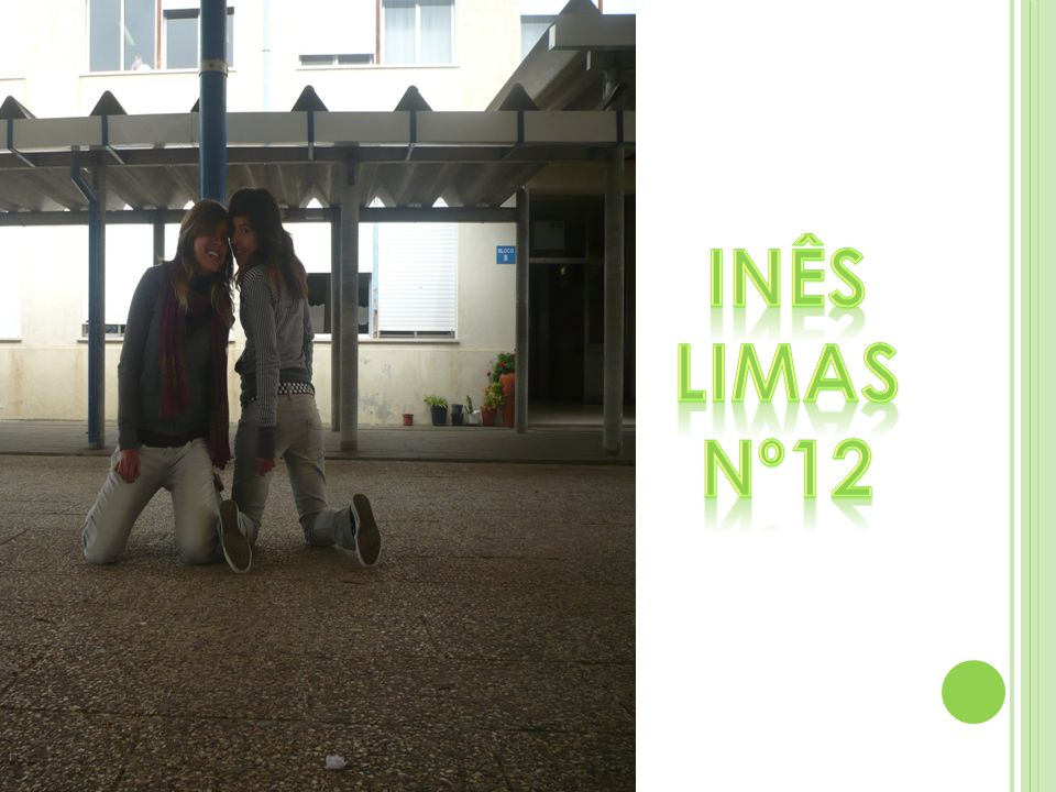 Inês Limas Nº12