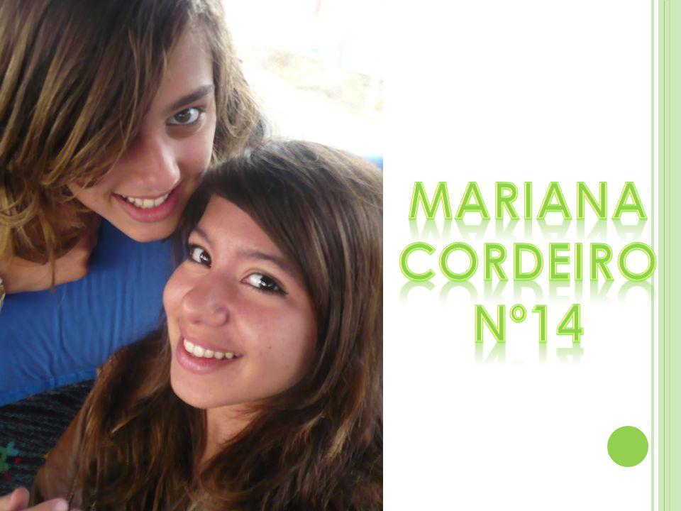 Mariana Cordeiro Nº14