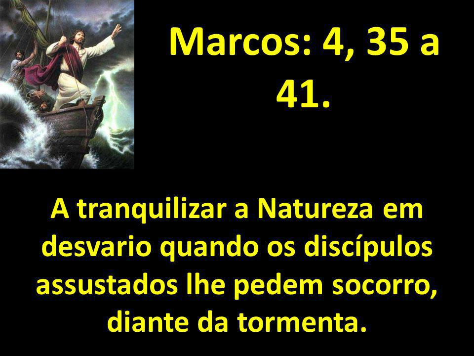 Marcos: 4, 35 a 41.