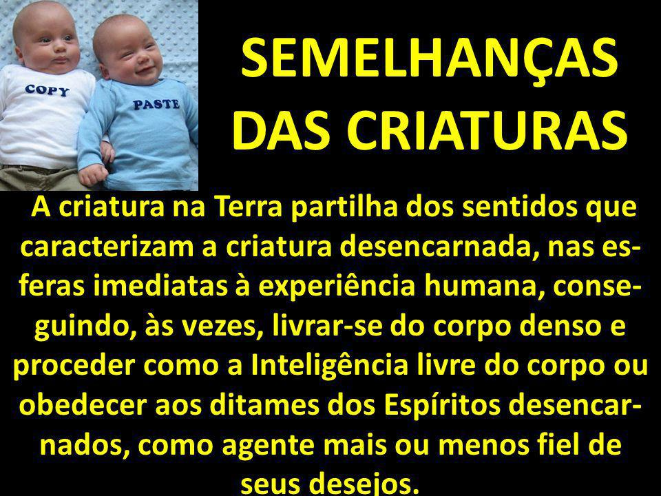 SEMELHANÇAS DAS CRIATURAS