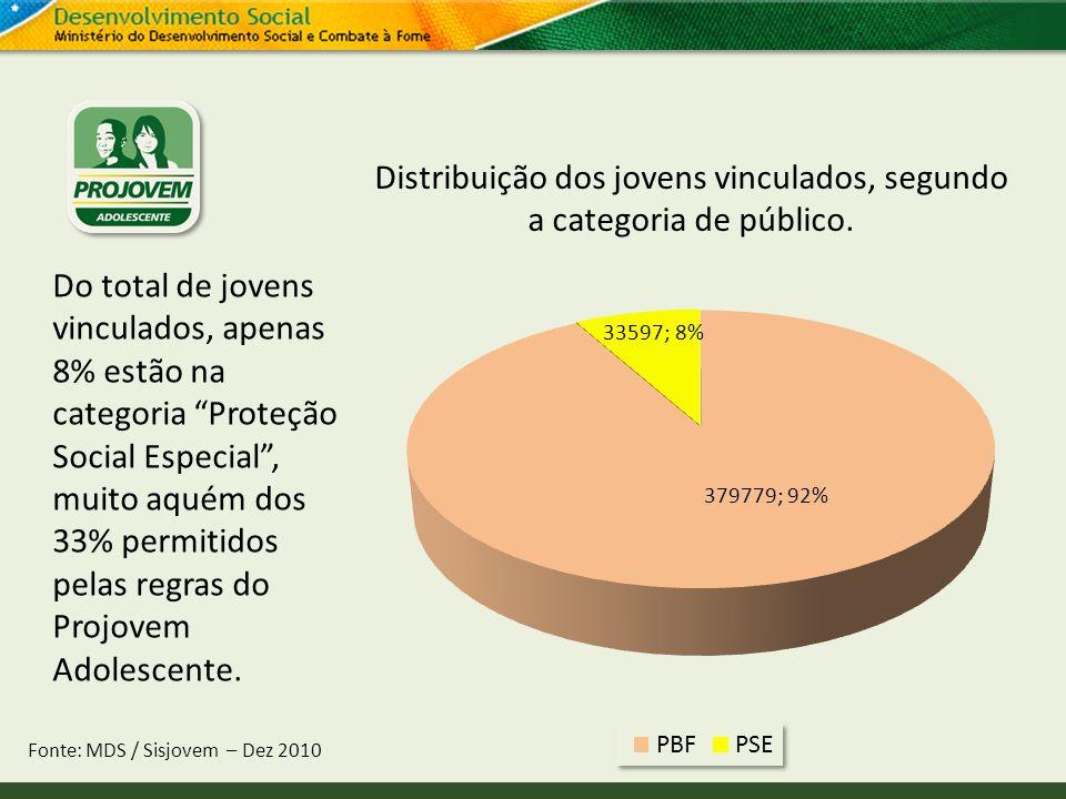Distribuição dos jovens vinculados, segundo a categoria de público.