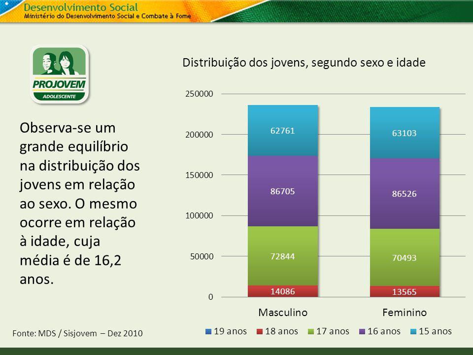 Distribuição dos jovens, segundo sexo e idade