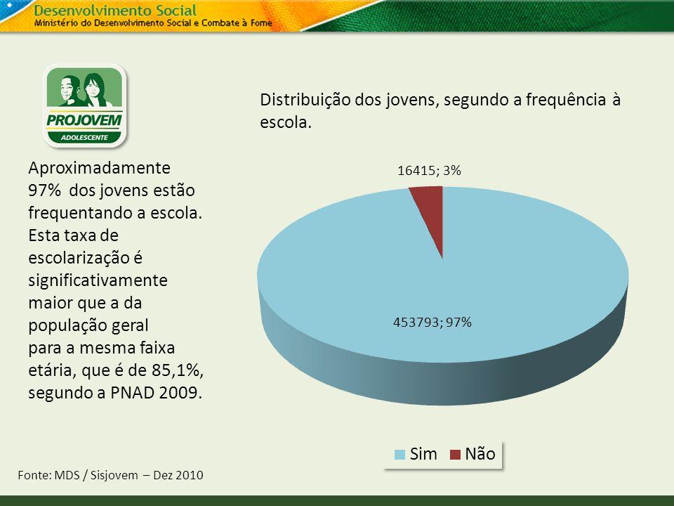 Distribuição dos jovens, segundo a frequência à escola.