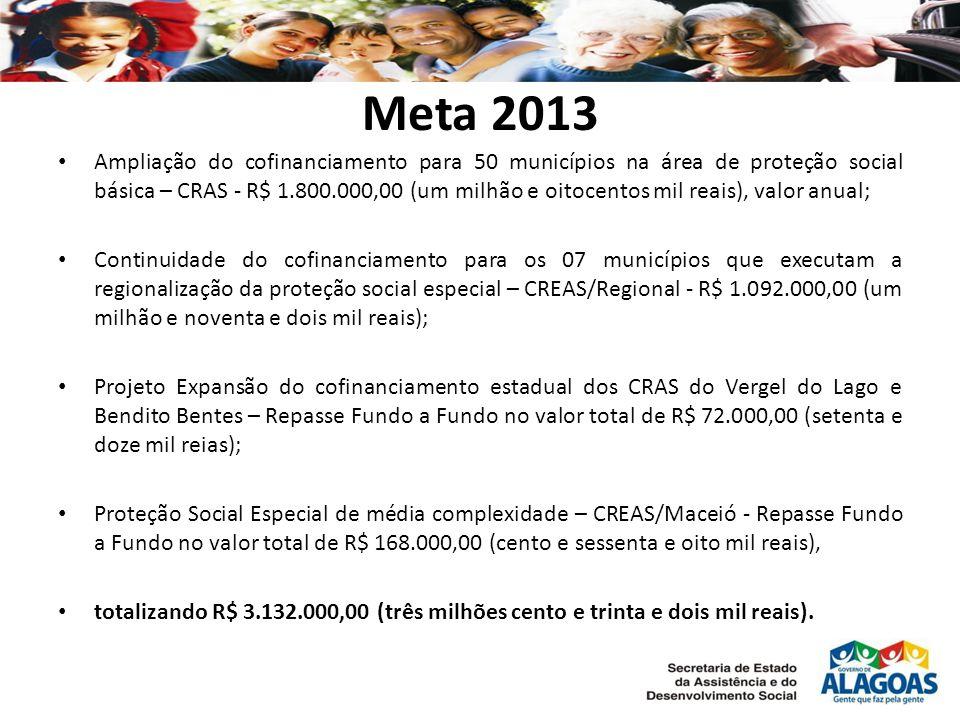 Meta 2013