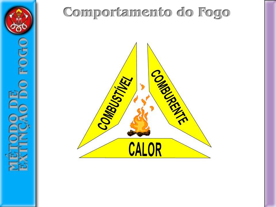 COMBUSTÍVEL COMBURENTE CALOR