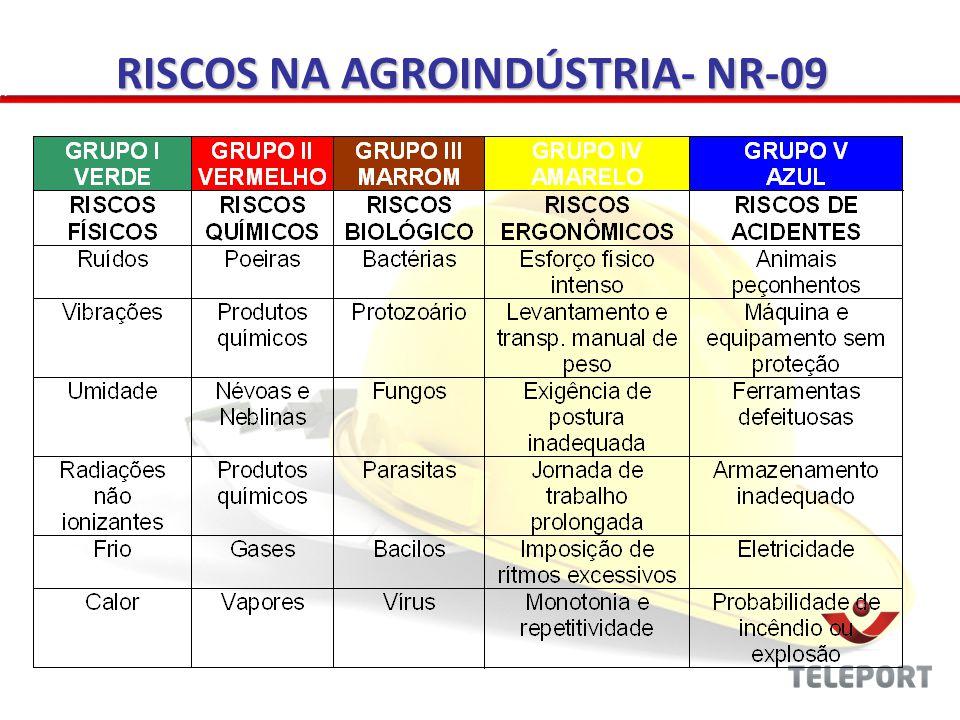 RISCOS NA AGROINDÚSTRIA- NR-09