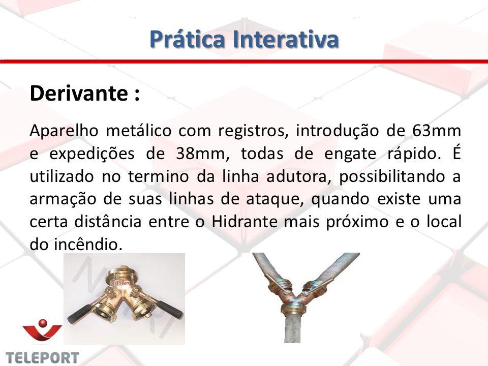 Prática Interativa Derivante :