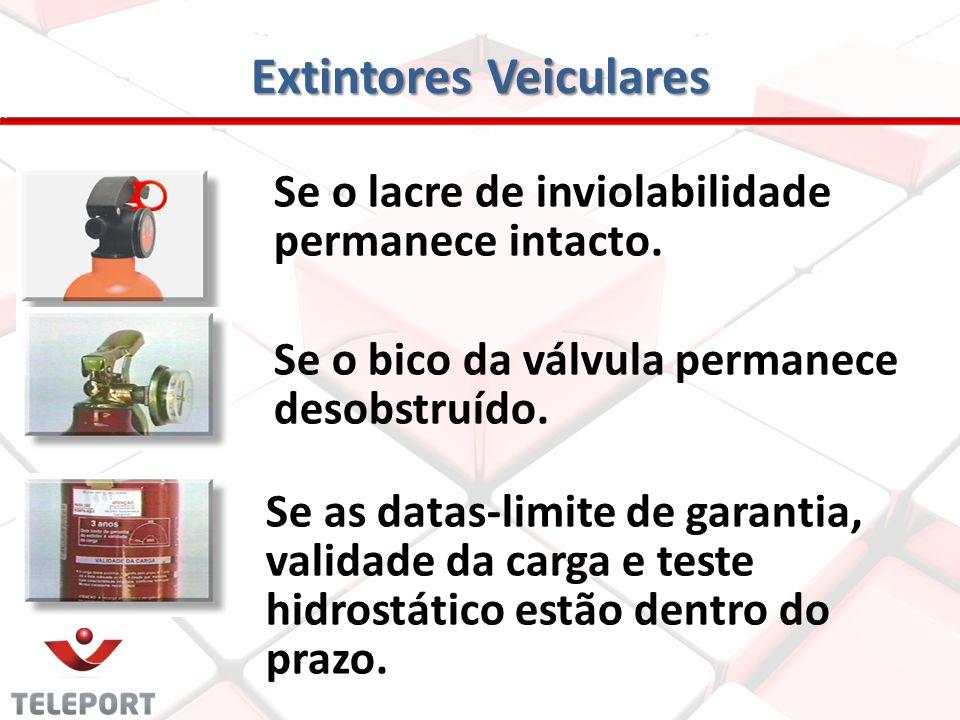 Extintores Veiculares